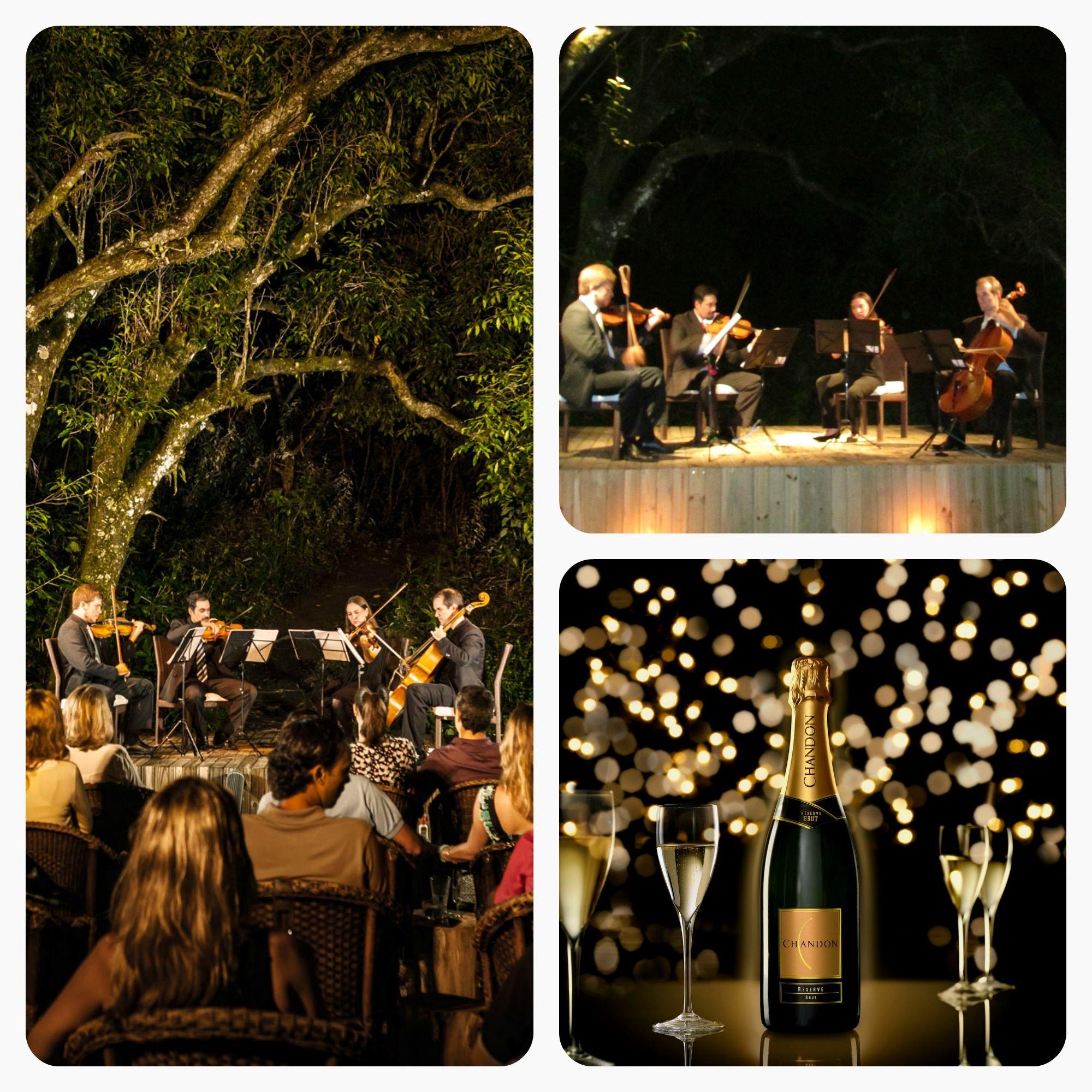 Concertos na Natureza , Verão 2014 - Ponta dos Ganchos | Santa Catarina
