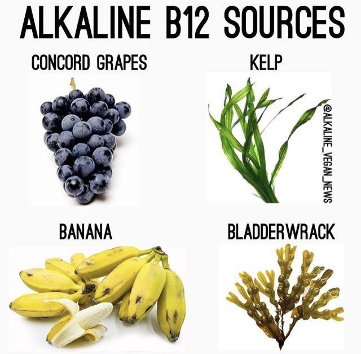 Barbend news barbend alkaline diet recipes dr sebi