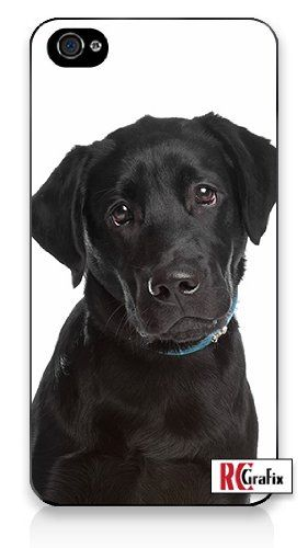 Must see Sad Black Adorable Dog - bcd255ae9ea2ee0efb4a63754aaabd85  Photograph_959347  .jpg