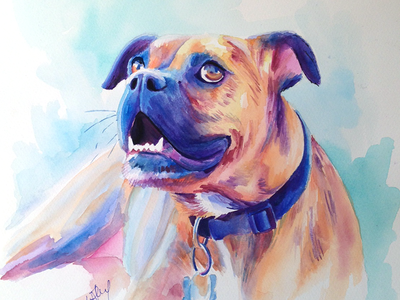 Boxer watercolor painting by Sophie Nemethy - Color & Quill