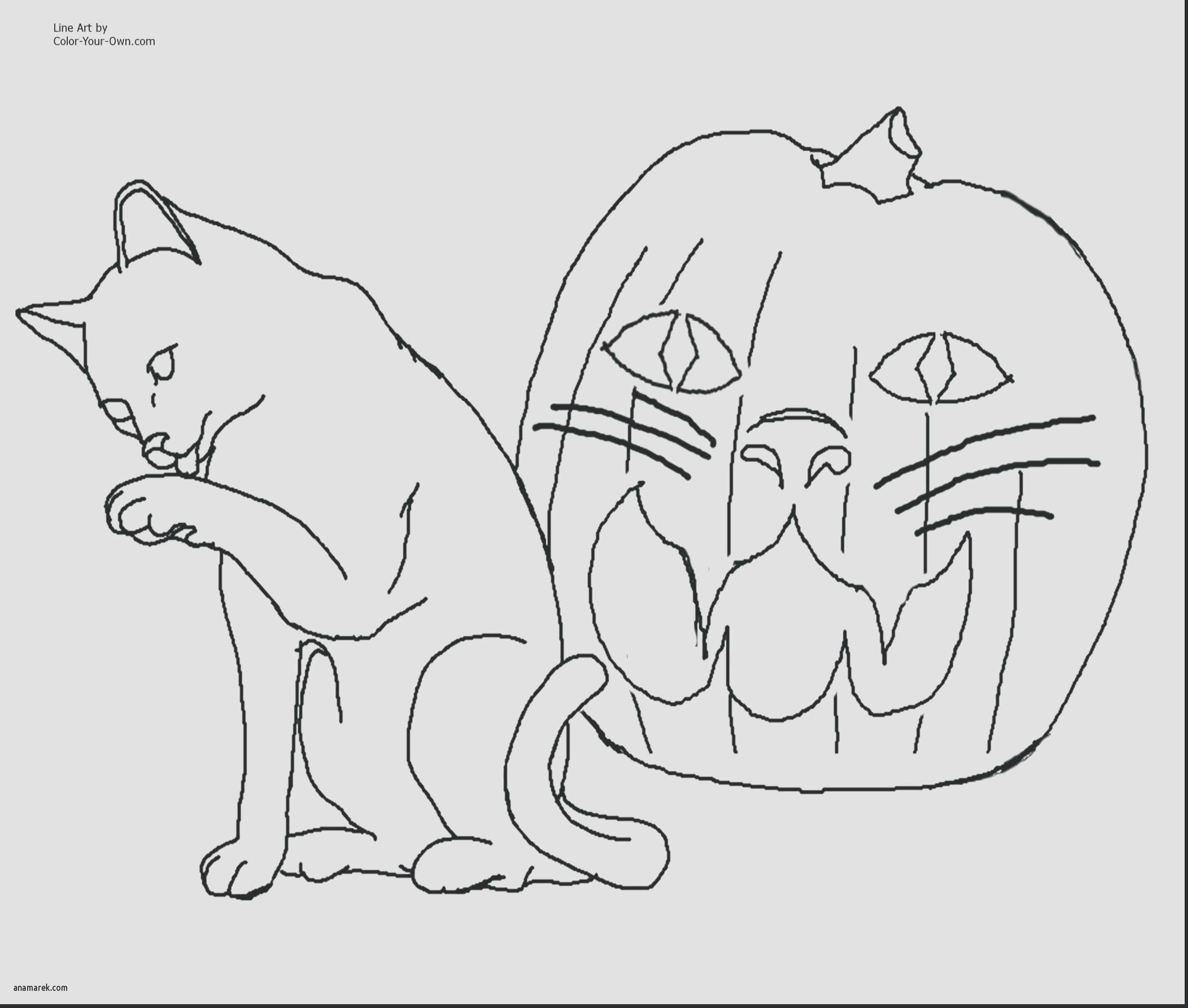 Pete the Cat Coloring Page Inspirational 80 Cat Coloring