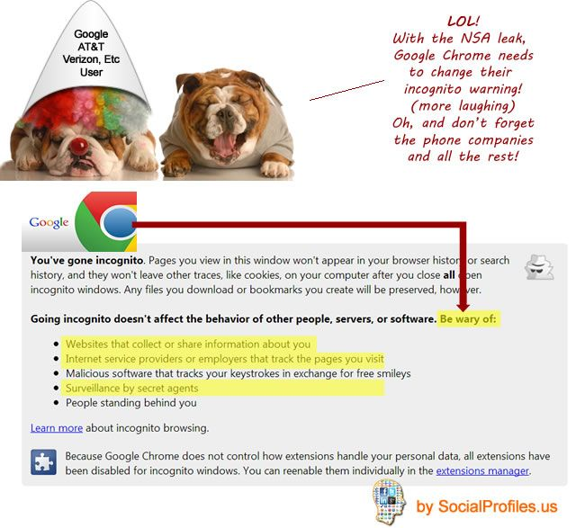Google Chrome Needs To Update Their Incognito Warning Post Snowden Nsa Leak Seo Consultant Google Chrome Parody Videos