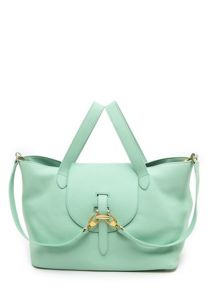 Mint satchel