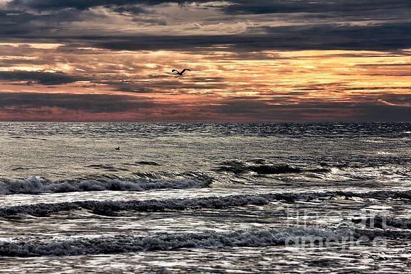 Carolina Sunset Photograph by John Rizzuto