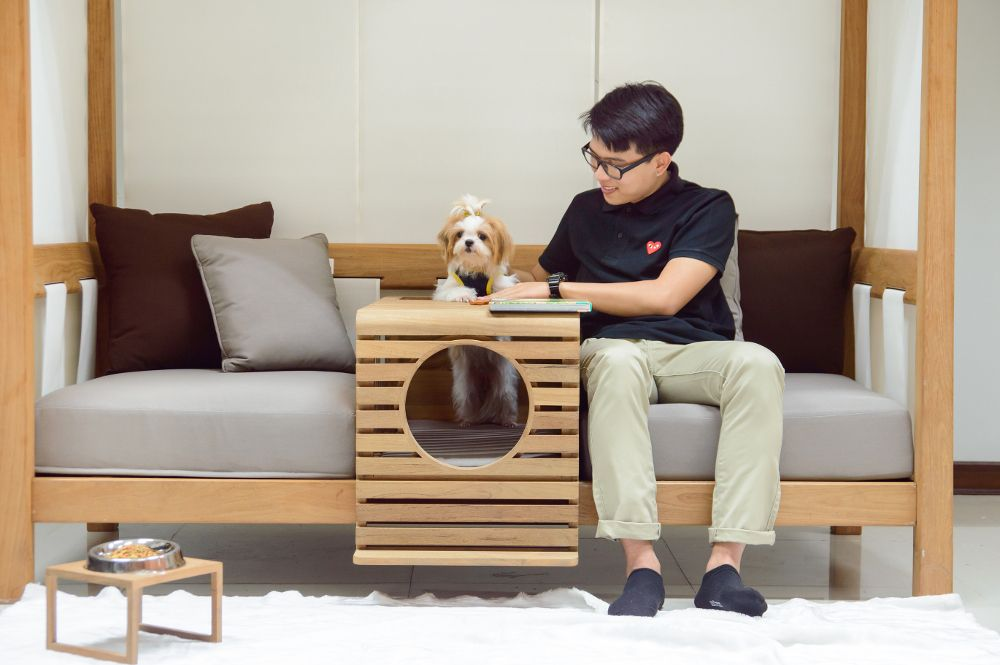 Pet Friendly Indoor Outdoor Daybed From, Pet Friendly Furniture