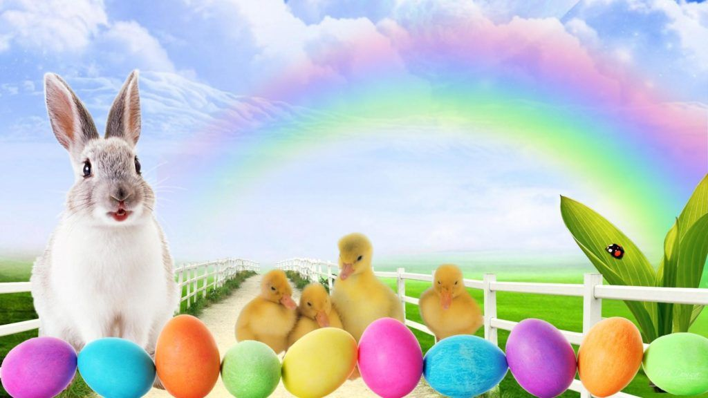 """Easter Bunny"" Images, Pictures, Clipart, Wallpaper HD ..."