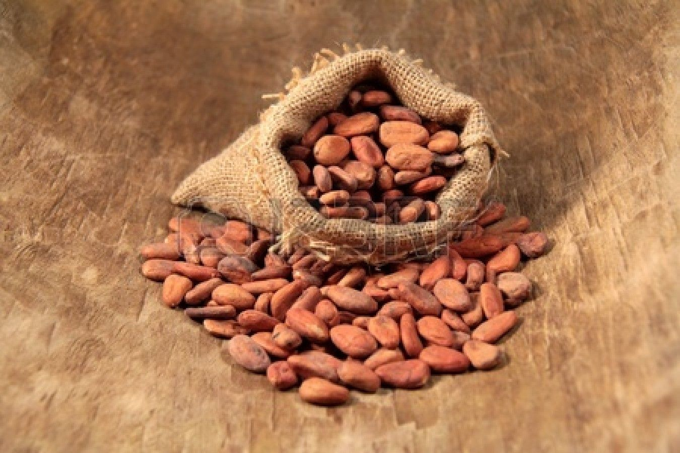 Trade) In Mayan agriculture, cacao beans were a new, major source ...
