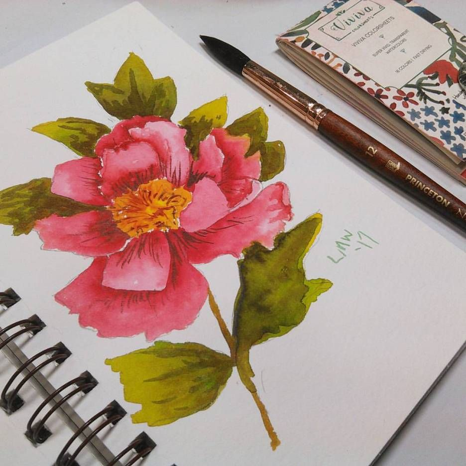 Easy Peony Flower Painting Viviva Colorsheet Review Peony