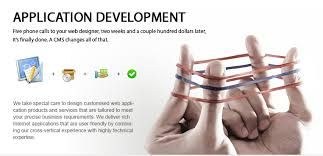 Rely on an experienced software application development company for better results,
