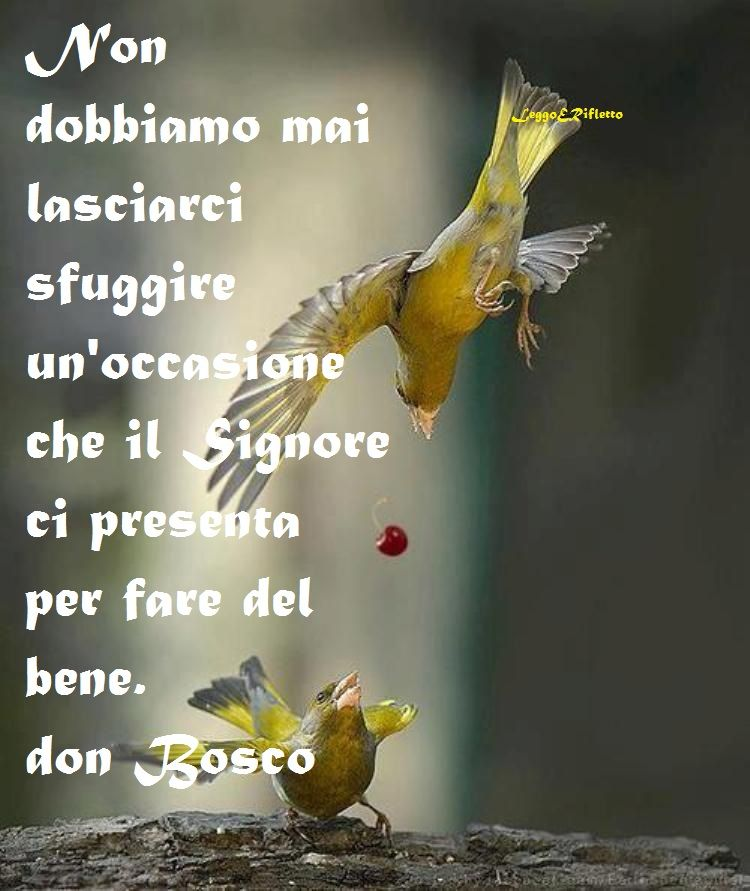 Frasi San Giovanni Bosco Cerca Amb Google Con Immagini Bosco