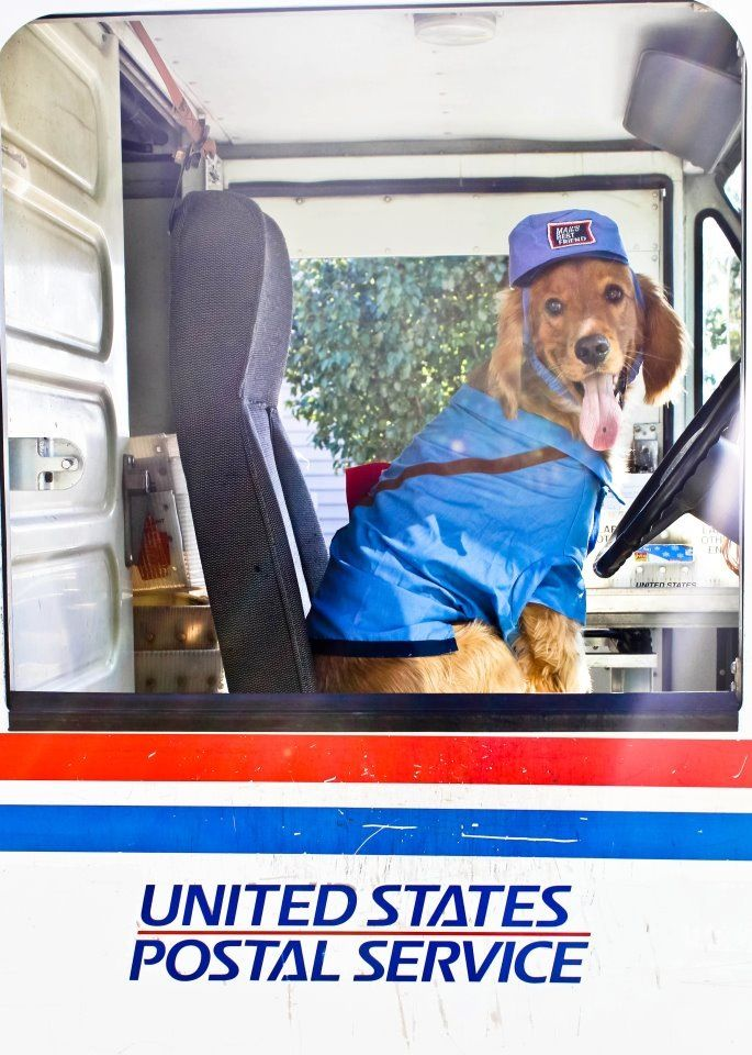 Pick Up Home Delivery At Usps Post Office