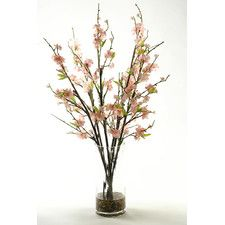 Cherry Blossom Branches in Glass Vase
