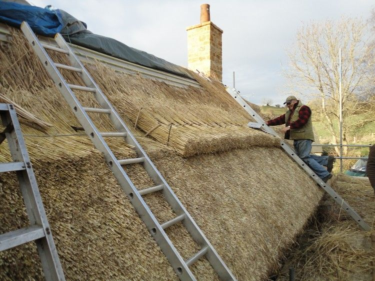 Dorset Thatch Hackett Holland Ltd Thatched Roof Roof Thatch