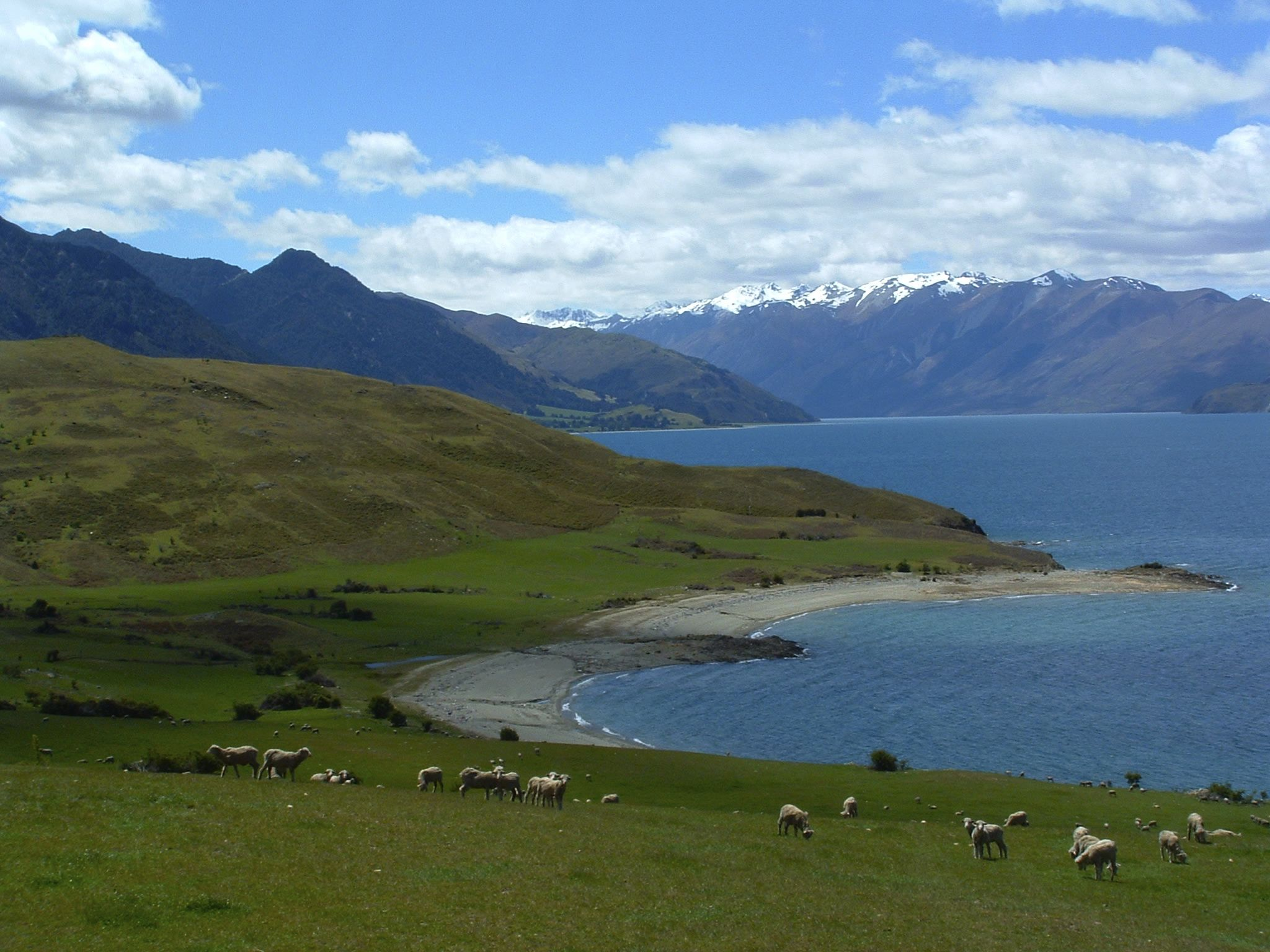 A Beautiful and Untouched Part of the World New zealand