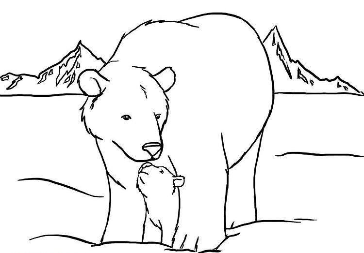 Polar Bear Coloring Pages Polar Bear Coloring Page Polar Bear Color Pictures Of Polar Bears