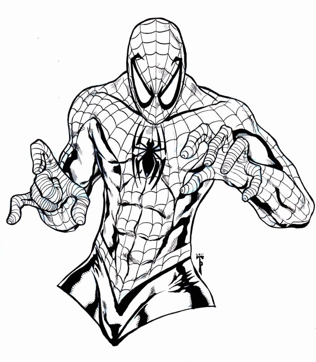 Sports Coloring Sheet Pdf Best Of Top 50 First Rate Free Printable Spiderman Coloring Pages 50freepri Spiderman Coloring Sports Coloring Pages Marvel Coloring