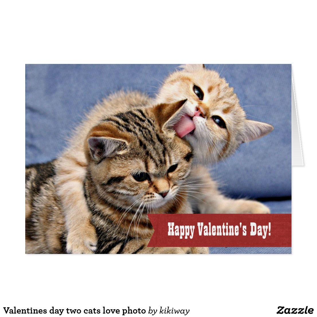 Valentines Day Two Cats Love Photo Holiday Card Zazzle Com Kitten Wallpaper Kittens Cutest Cats And Kittens