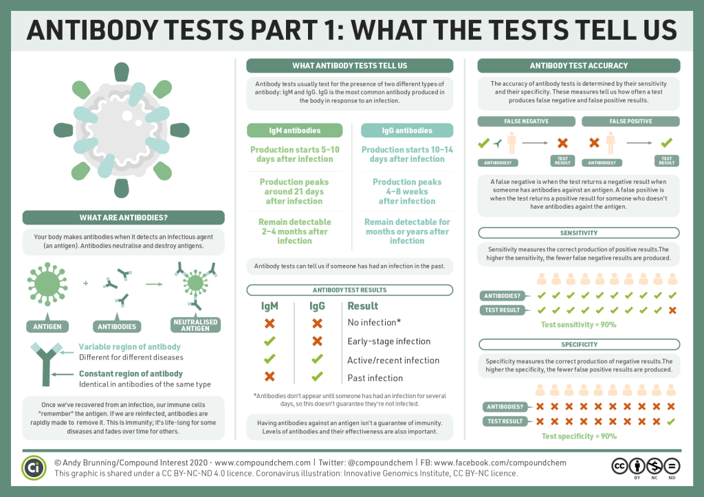 Antibody tests, part 1 What can antibody tests tell us