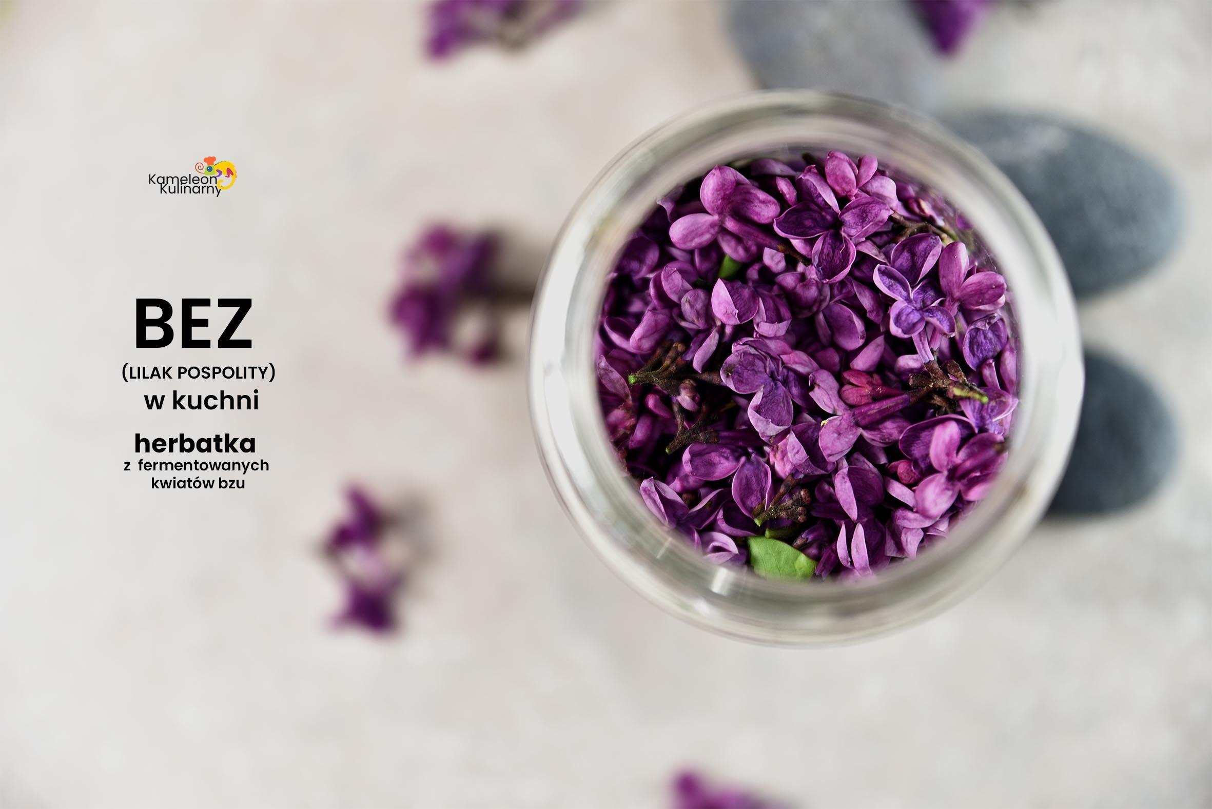 Bez W Kuchni I Herbatka Z Suszonych I Fermentowanych Kwiatow Bzu Syringa Vulgaris Lilac Syringa