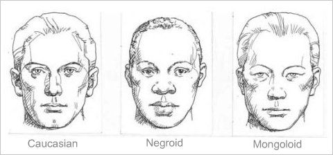 Facial structures of different races