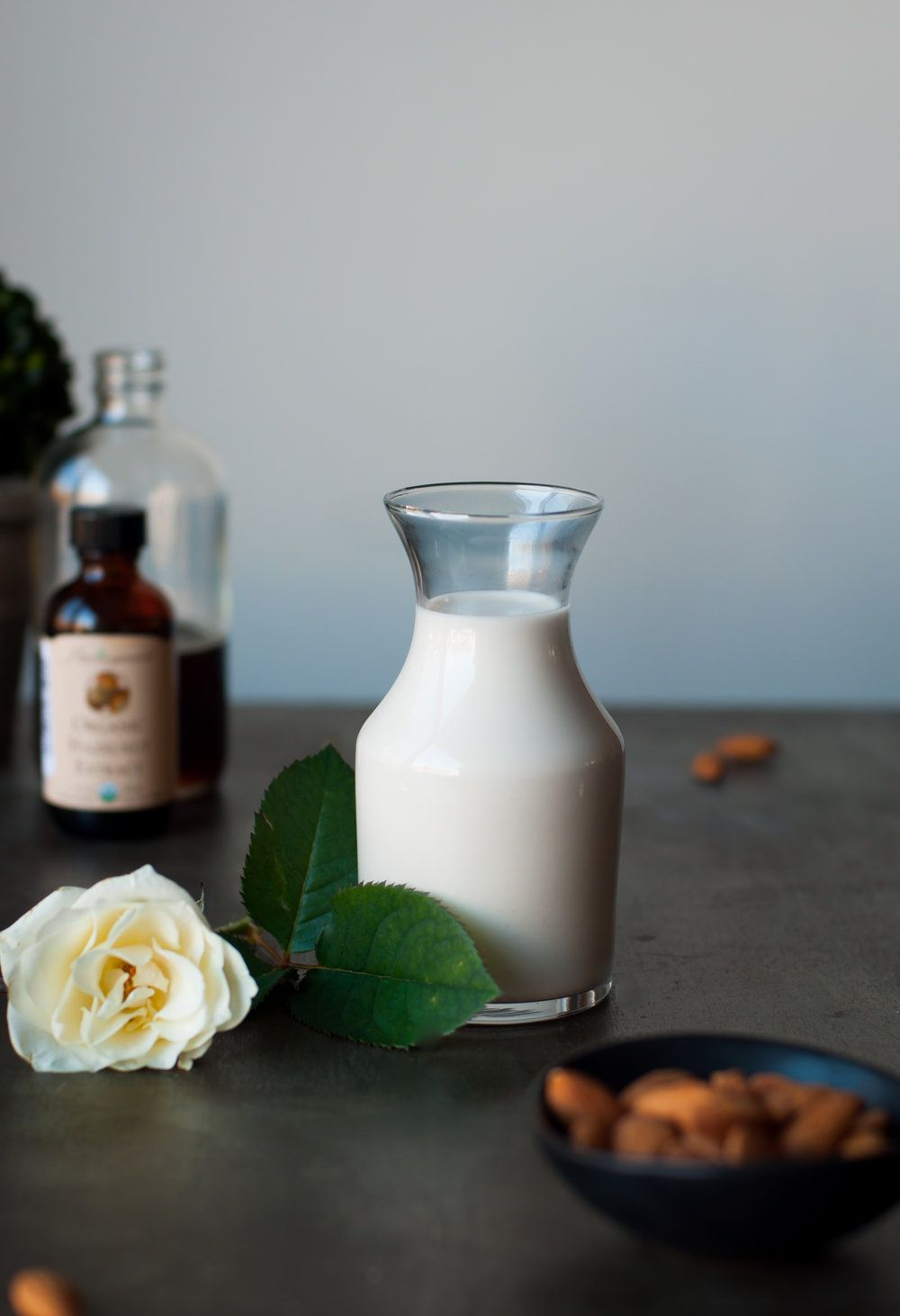Hazelnut dairy free coffee creamer dairy free refined