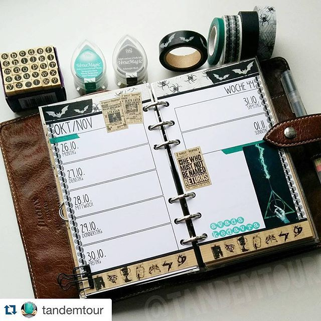 Absolutely adore this layout. Perfect colors too!! #loveit #planner #plannerlove #planning #planninglove #lovethisplanner #Repost @tandemtour with @repostapp. ・・・ #tandemtourswoche Week 44! :) #pottermeetsplanner #potterfilo #avadakedavra
