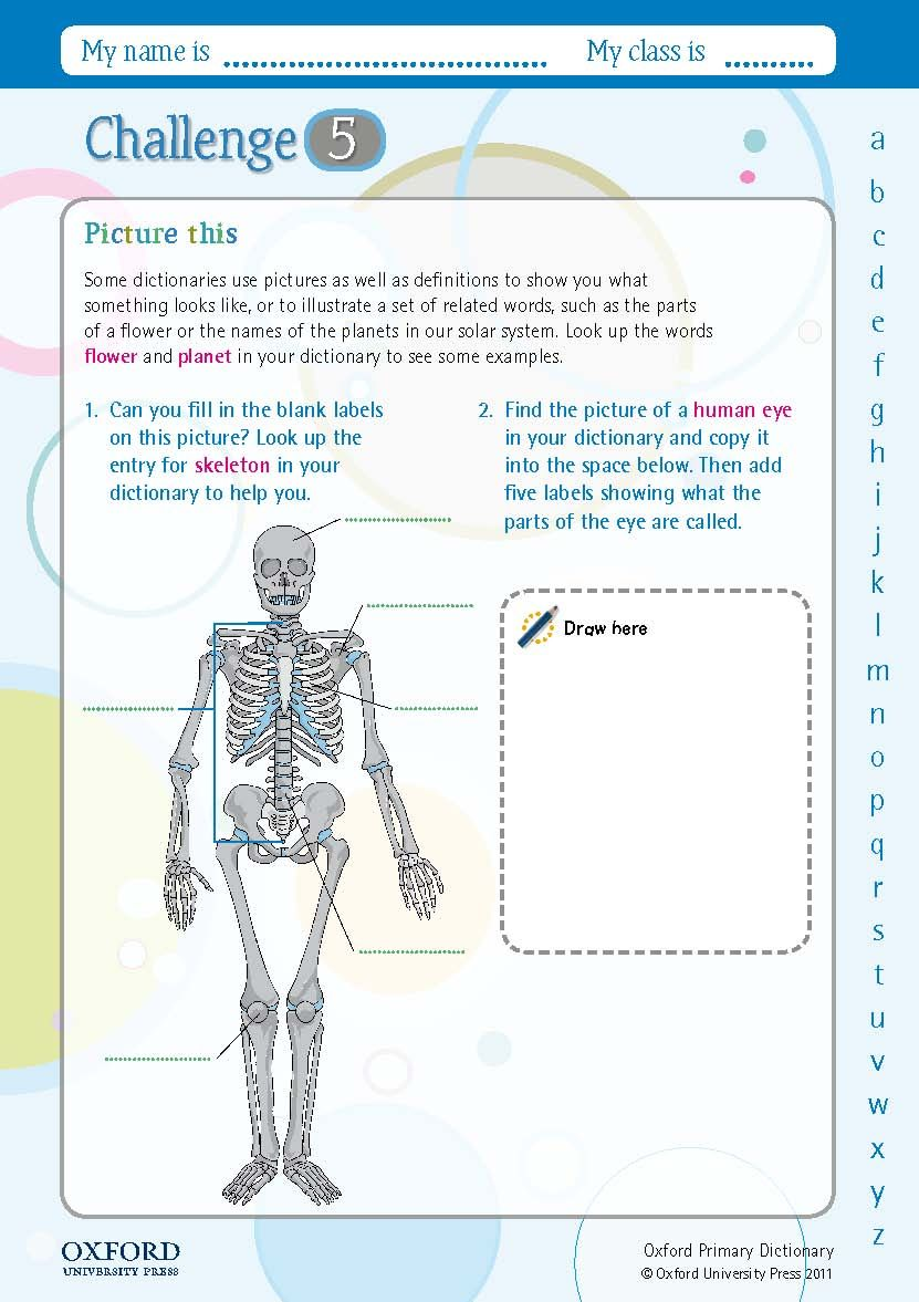 Download Your Free Oxford Primary Dictionary Challenge Worksheet Image Human Eye Diagram Can You Fill In The Blank Labels Of This Skeleton