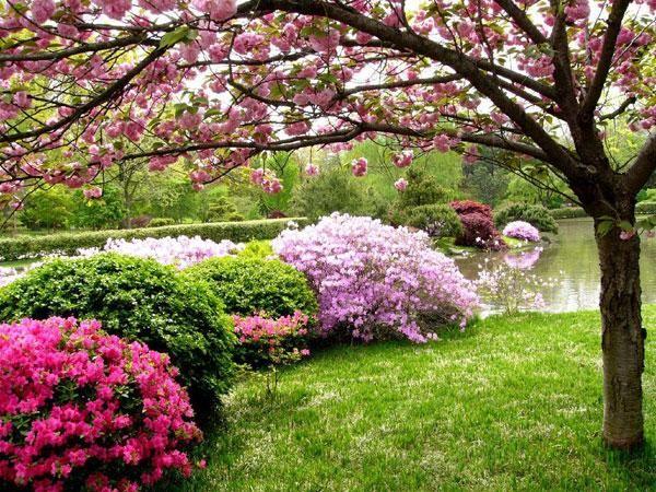 jardin anglais - Recherche Google   Jardin   Pinterest   Western ...