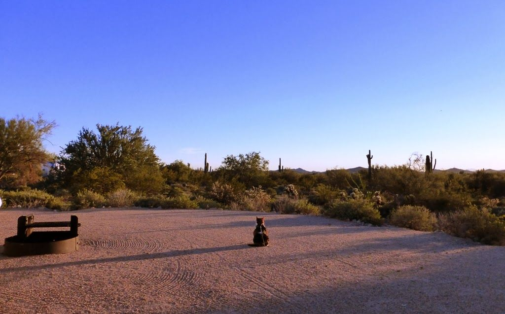 Campground Review Cave Creek Regional Park Cave Creek Az Near Phoenix Campground Reviews Cave Creek Campground