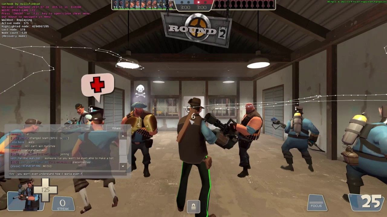 So I found out who the cat bot hacker is #games #teamfortress2