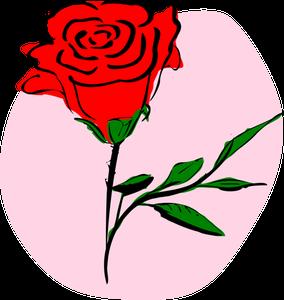 Gambar Animasi Bunga Mawar Hitam 366 Mawar Clipart Gratis Domain Publik Vektor 1000 Gambar Bunga Dan Tanaman Hias Terindah Dan Te Di 2020 Gambar Bunga Lukisan Bunga