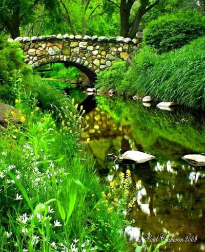 creek with stepping stones..