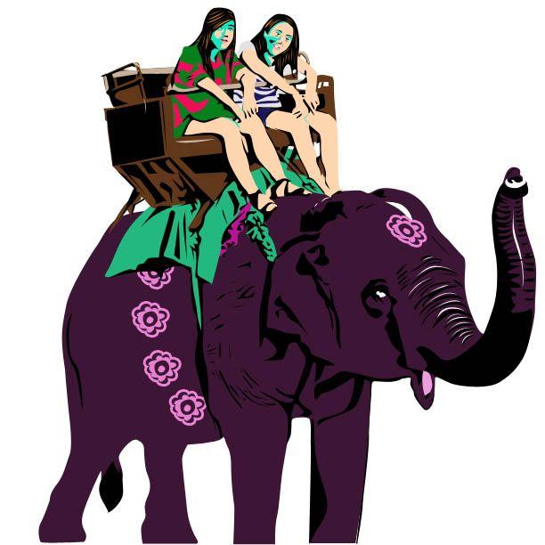 A dos d'elephant