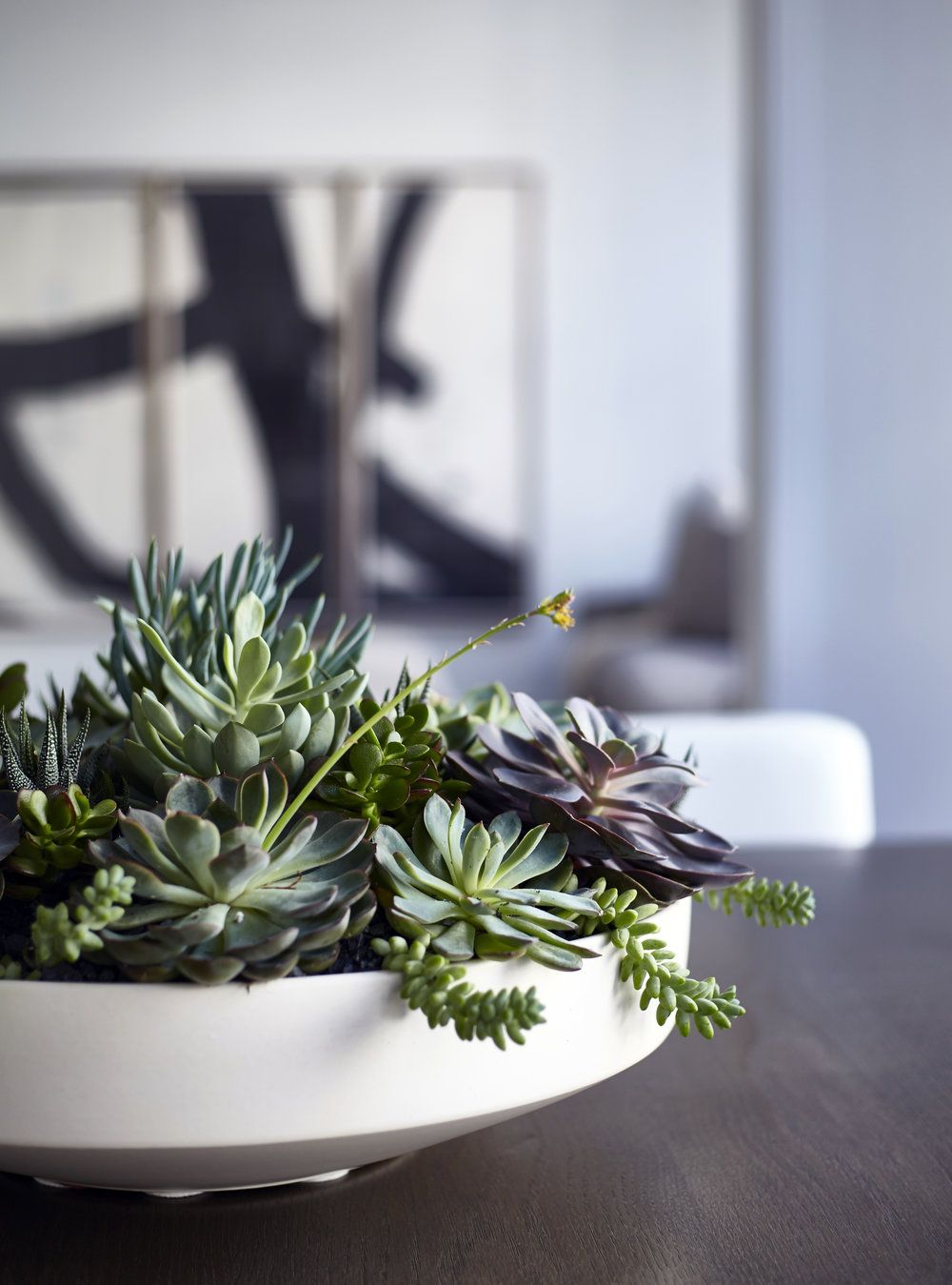 Pin By Shannon Cisar On Powder Room Succulent Centerpiece Dining Room Dining Table Centerpiece Dining Table Decor Centerpiece