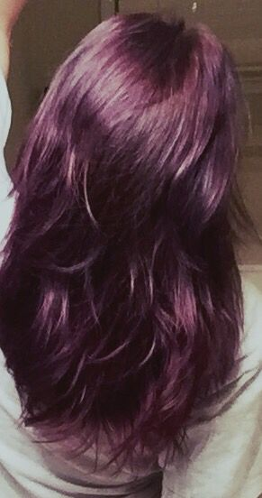 Ion Brilliance 2 Purple Eggplant Purplehair Applied To Light Ashe Brown Hair Sallys