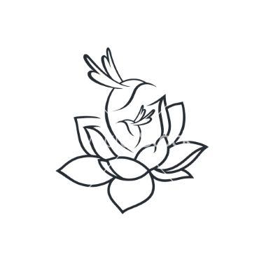 Birds In Flower Sign Vector Lotus Hummingbird By Steinar14 On