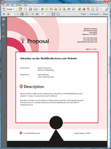 Website Advertising Offer Sample Proposal  Create Your Own Custom