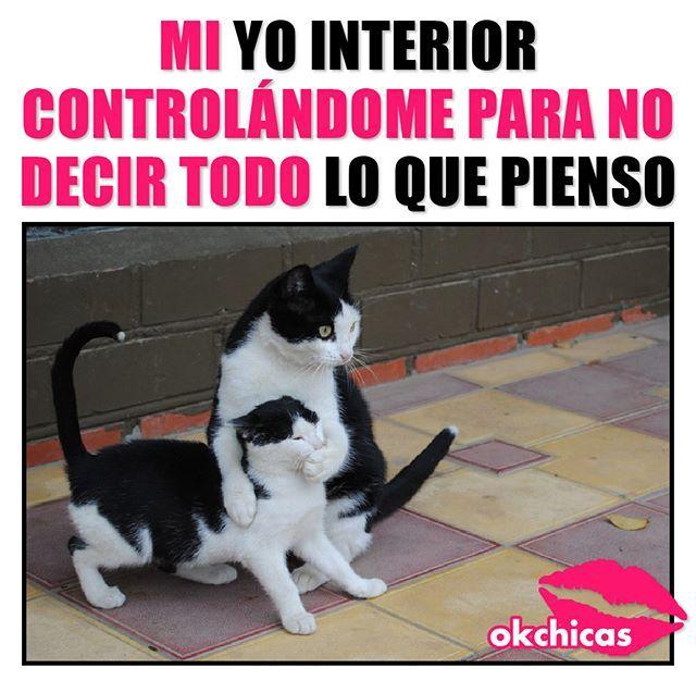 Es Lo Mas Dificil Del Mundo Funny Friend Memes Funny Memes Memes