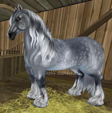 Horses Starstable Database Horses Star Stable Icelandic Horse