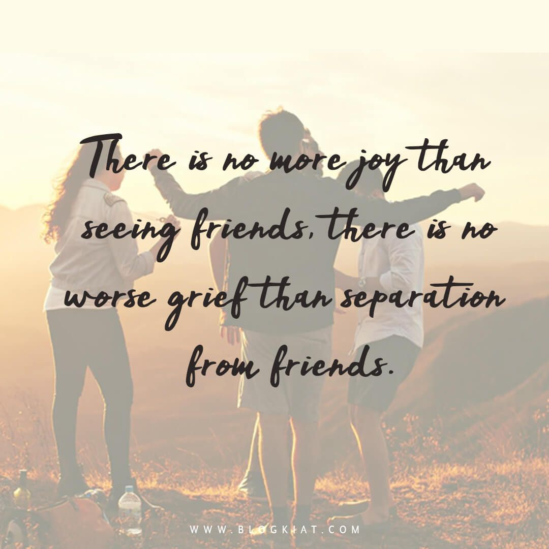 Best Friendship Quotes Status For Your Best Friends Best Friendship Quotes Friends Forever Quotes Best Friend Quotes Meaningful 65+ new attitude status in english for. best friendship quotes status for