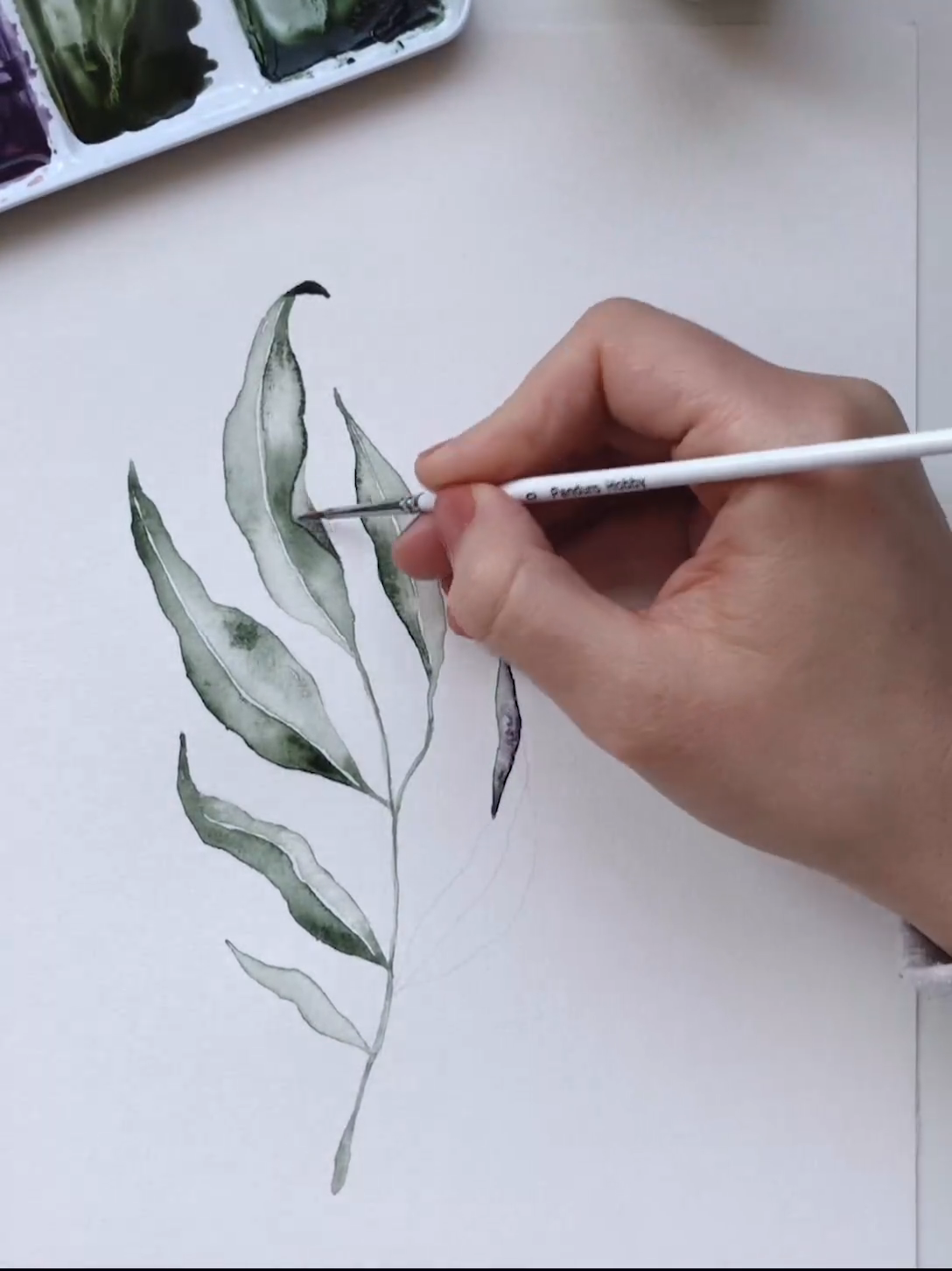 Green watercolor branch painting by Angele Kamp #watercolor #green #leaves #video #tutorial #diy #branch #greenumber