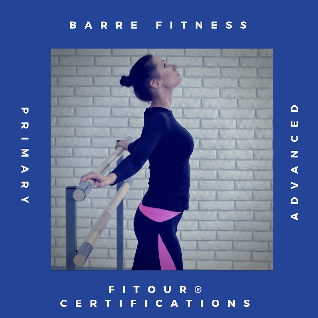 Fitour Primary And Advanced Barre Fitness Certifications Learn