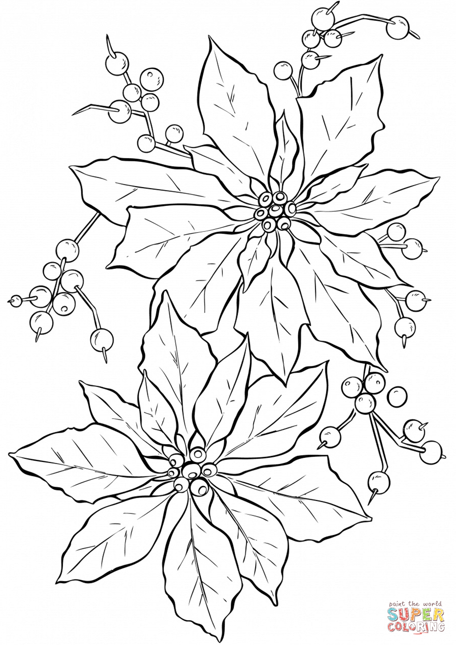 Poinsettia Flower Super Coloring Christmas Coloring Pages Coloring Pages Christmas Colors