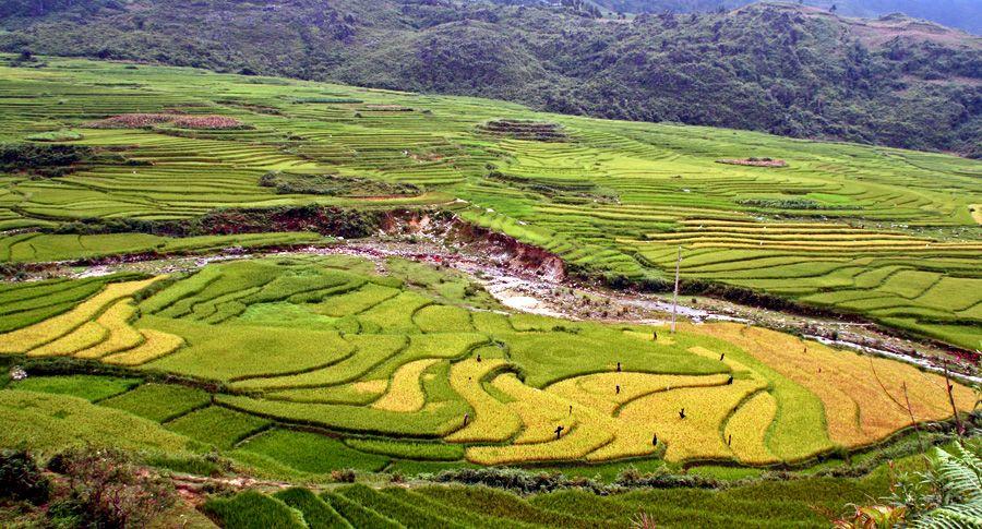 Sa Pa (Vietnam)