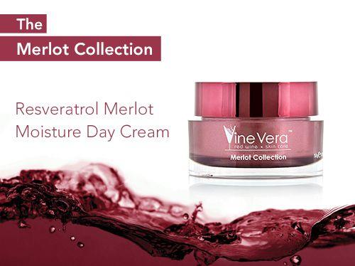 Resveratrol Cabernet High Potency Moisture Day Cream Vine Vera Natural Anti Aging Skin Care Resveratrol Vine Vera Resveratrol