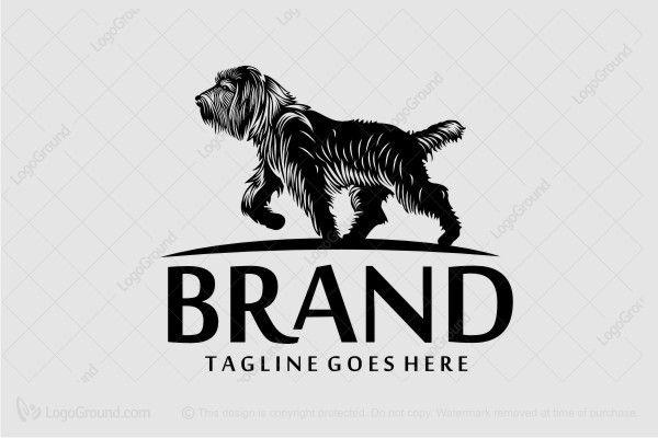 Exclusive Logo 42343 Dog Training Logo Dog Logo Animal Logo