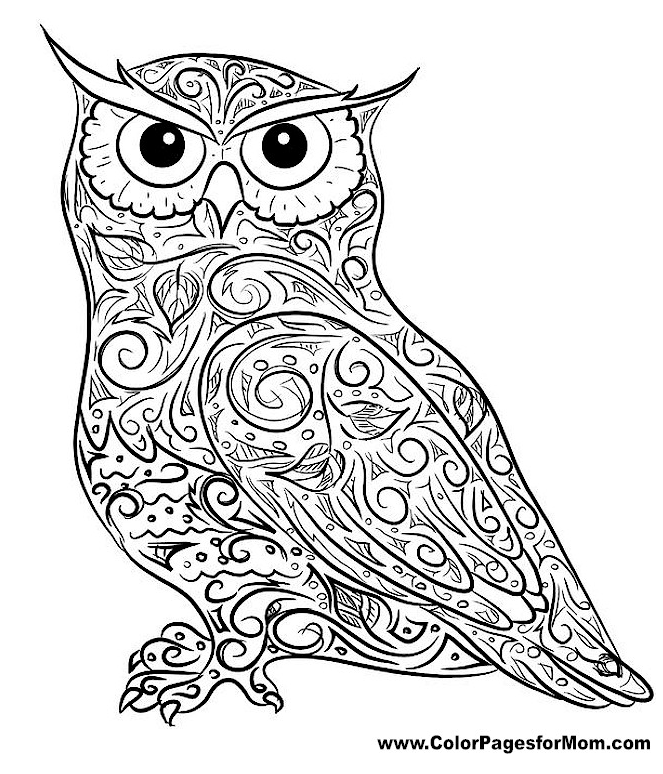 30 Totally Awesome Free Adult Coloring Pages Owl Coloring Pages