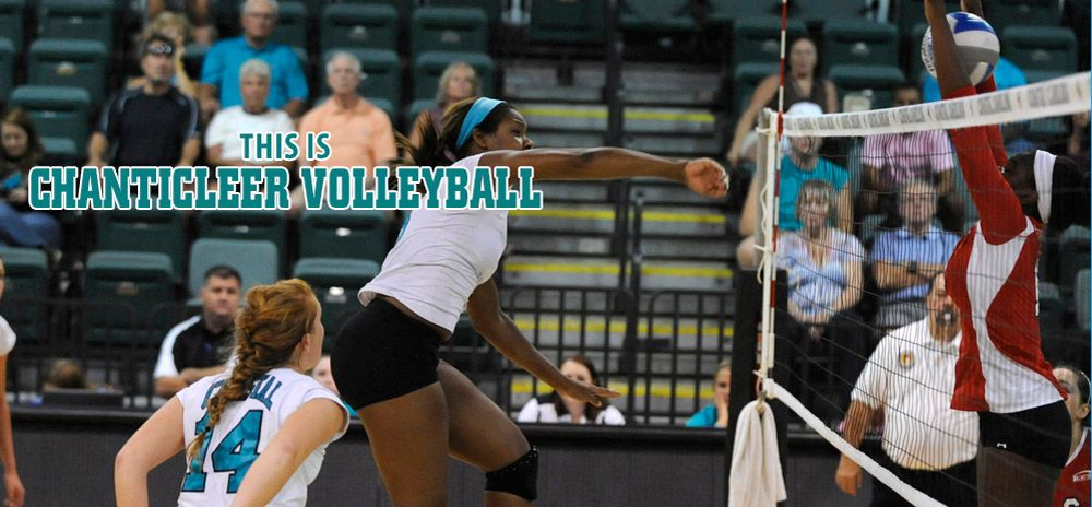 Pin by Coastal Carolina Athletics on Volleyball Women