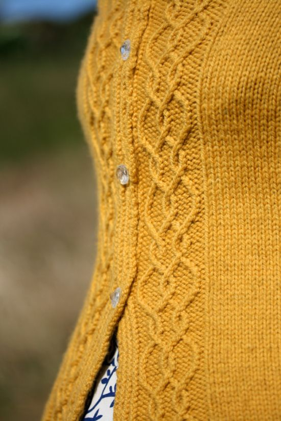 e425a05f Beautiful twisted cable detail on the button band of Kate Davies lovely new  cardigan design Braid Hills
