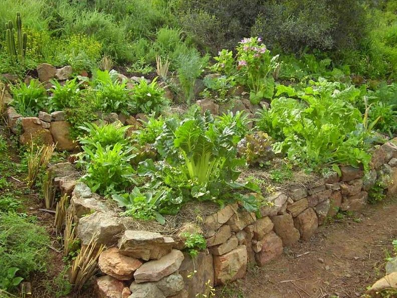 Vegetable Garden Raised Bed With Stacked Rock Wall Something We Could Do All The Rocks On Our Property